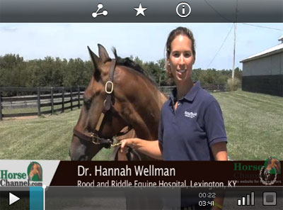 Equine Joint Health and Lameness Video