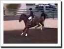 Rider Jumps Without Stirrups