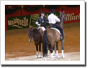 Reining and Dressage