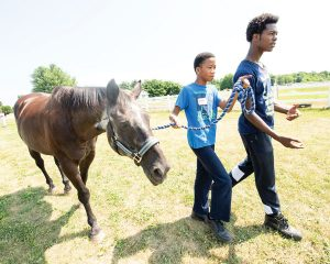 Urban Riding Programs - Detroit Horse Power