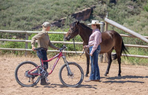 Introducing a Horse to a Bicycle