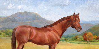 Joan E. MacIntyre Equine Art