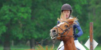 Horse refusing a jump