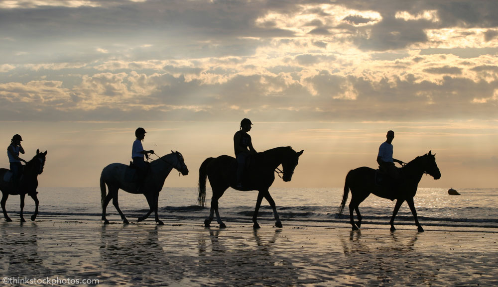 Group horseback riding on the beach