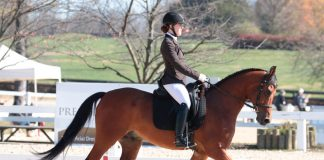 Horse and rider competing at the US Dressage Finals in 2018
