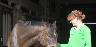 Soaking a horse's hoof