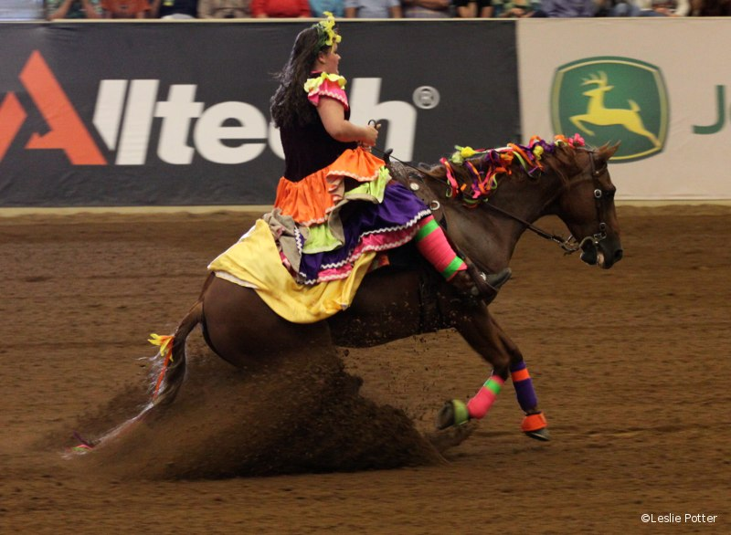 Freestyle Reining at the 2010 Alltech FEI World Equestrian Games