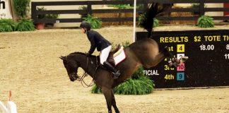 Horse bucking after a jump