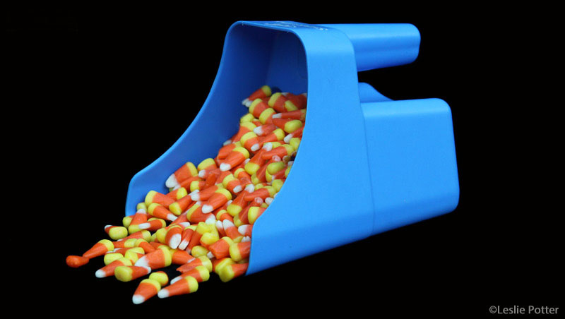 Feed scoop full of candy corn