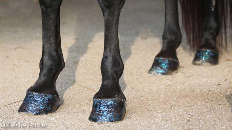 Glitter hoof polish