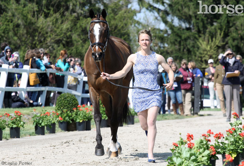 2015 Rolex Kentucky Three-Day Event jog
