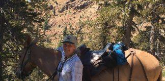 Joe Pack Horse