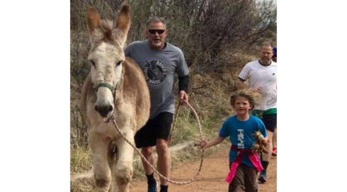 Running with Donkeys