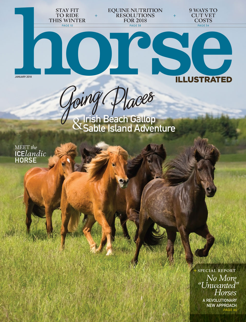 Horse Illustrated January 2018