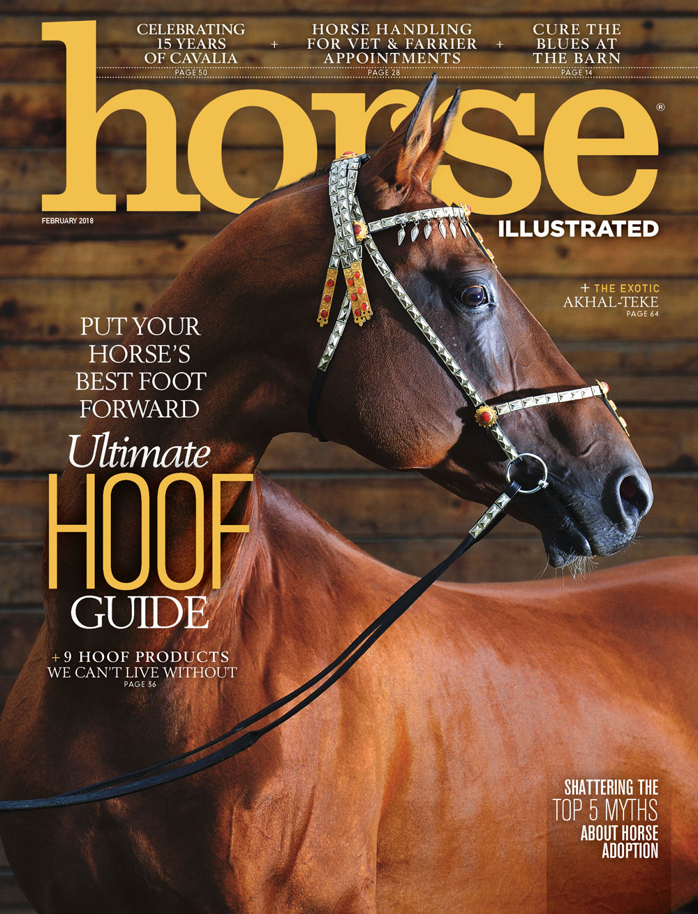 Horse Illustrated February 2018