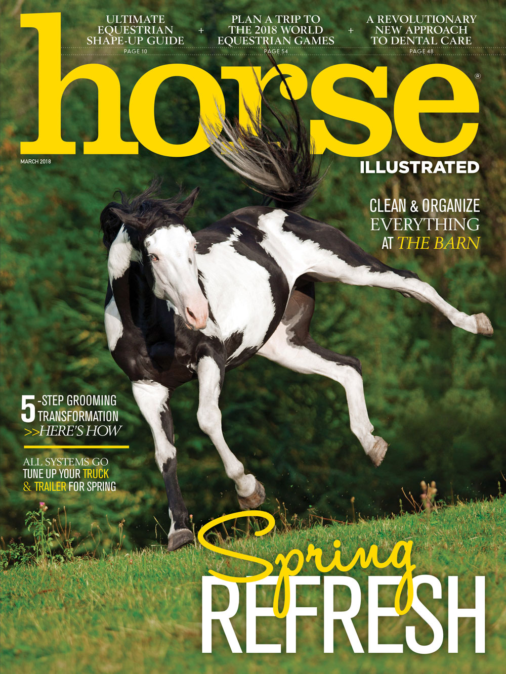 Horse Illustrated March 2018