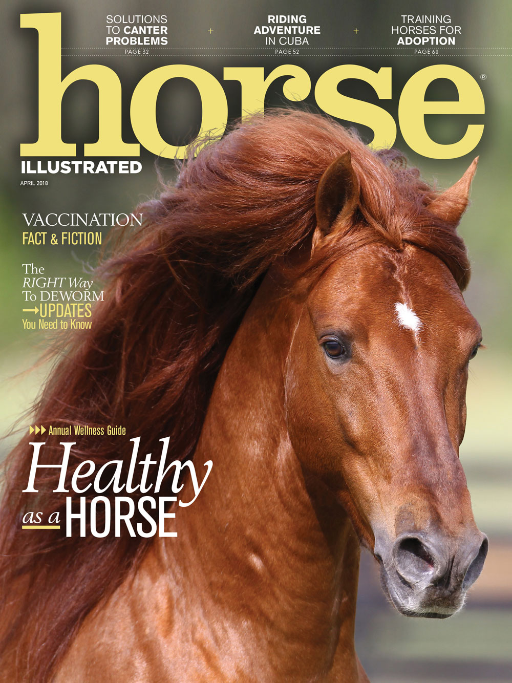 Horse Illustrated April 2018