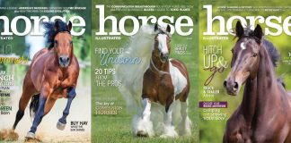 Horse Illustrated 2019 covers