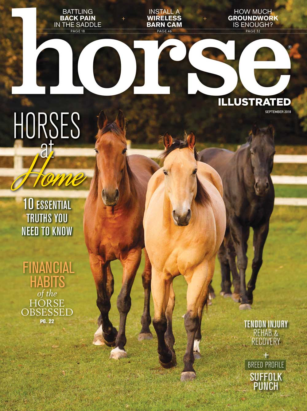 September 2018 Horse Illustrated magazine cover