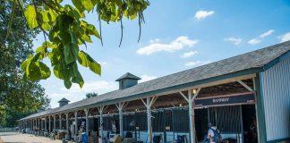 Kentucky Horse Park Stabling