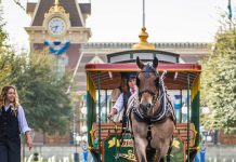 Horses of Disney