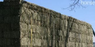 Truckload of hay