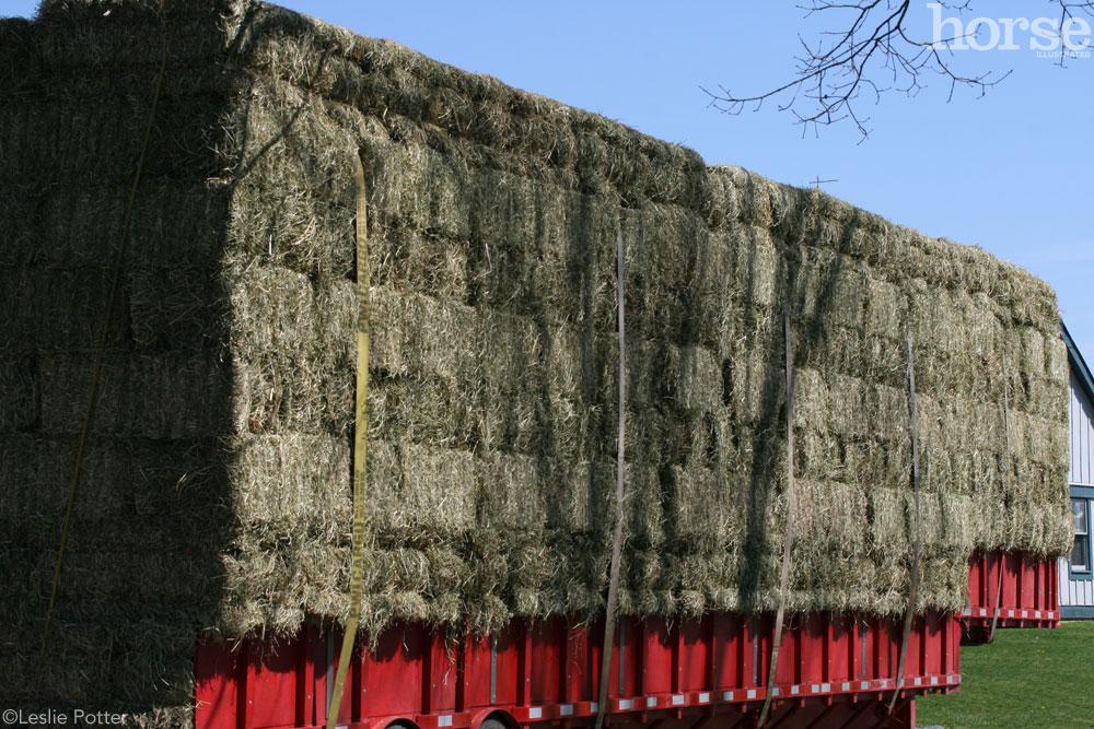 Truckload of hay