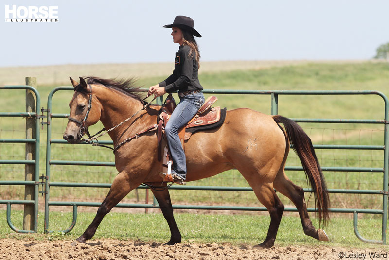Barrel Racing Troubleshooter Horse Illustrated