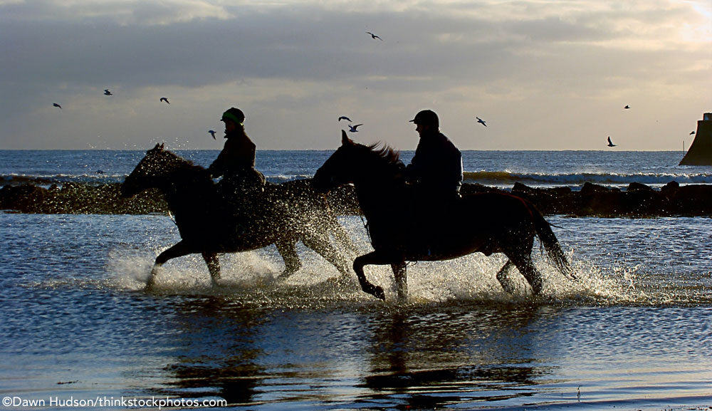 Two horse-and-rider pairs riding in the ocean