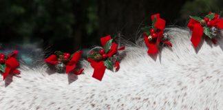 Christmas horse braids