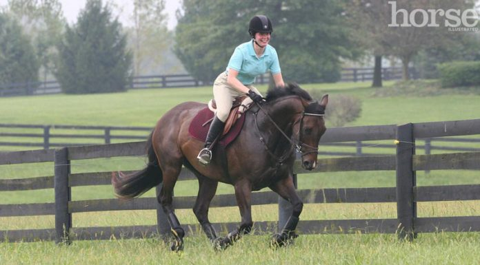 Cantering a horse uphill
