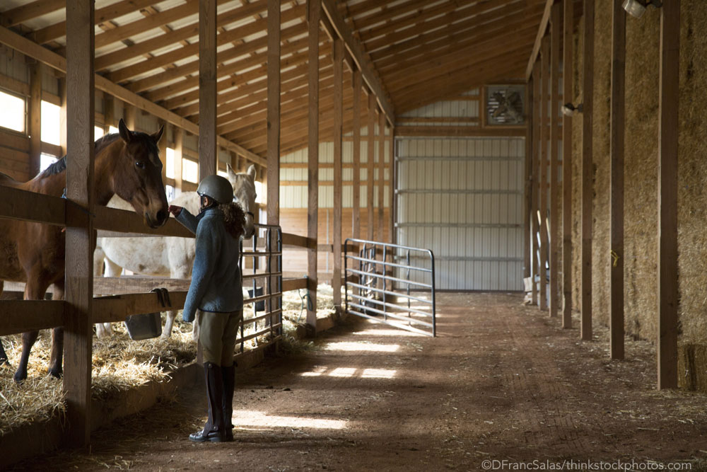 Interior of horse barn