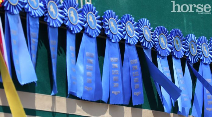 Horse Show Ribbons