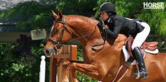 Hunter horse show