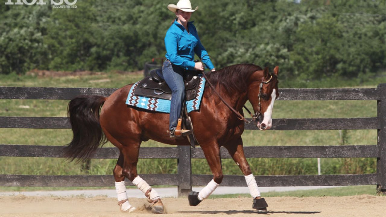 10 Ways To Improve Your Western Riding Horse Illustrated
