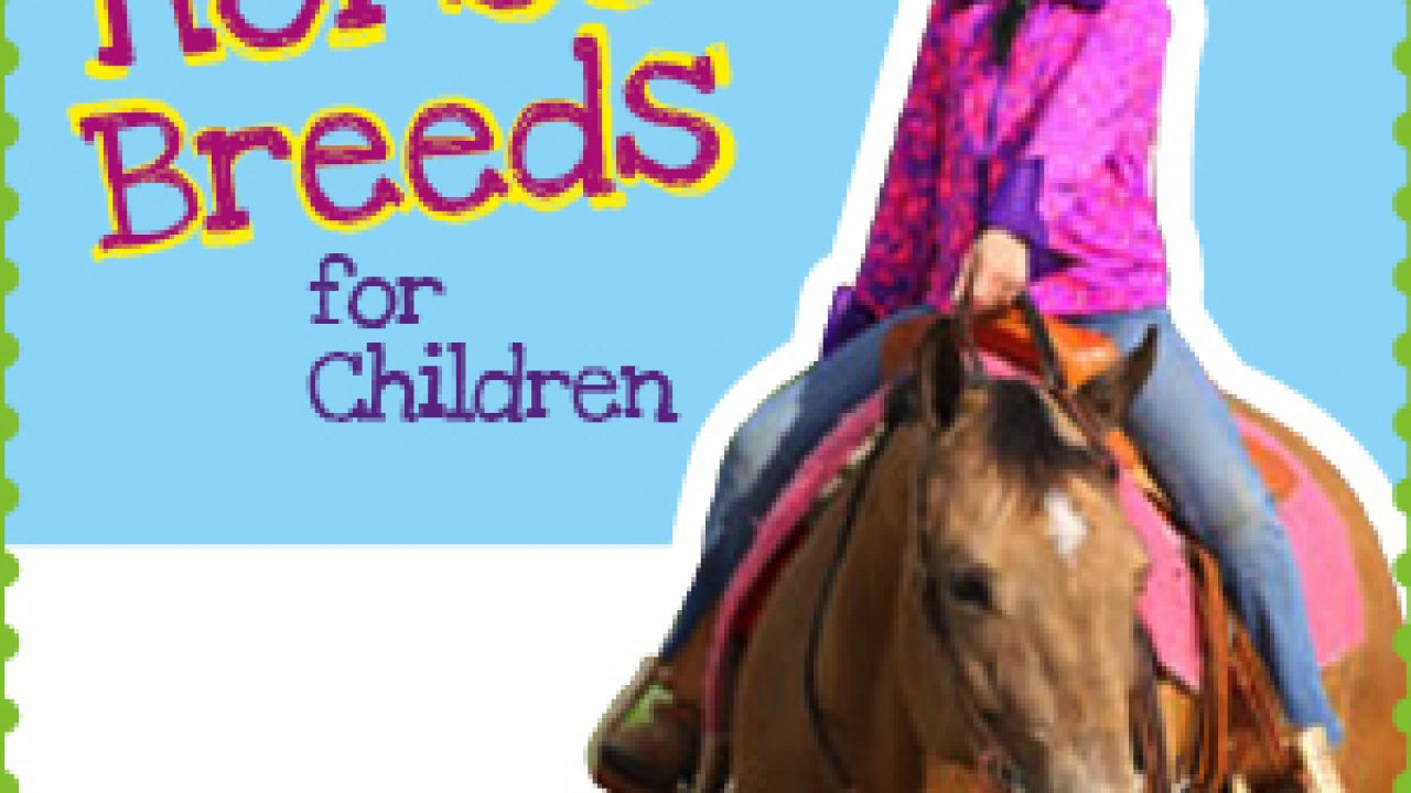Best Horse Breeds For Kids Horse Illustrated