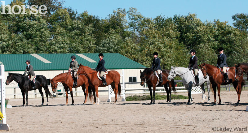 Horse show line-up