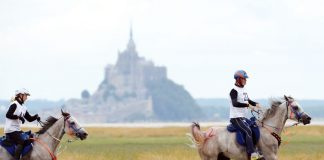 Riders competing in the endurance ride at the 2014 Alltech FEI World Equestrian Games in Normandy, France
