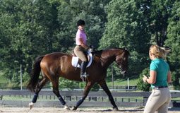 English riding lesson