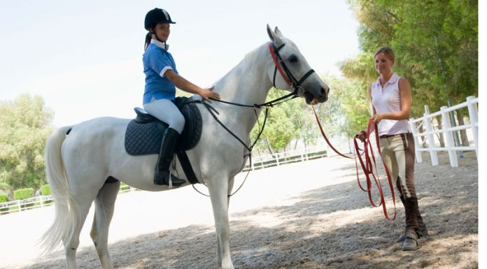 Riding lesson on a longe line