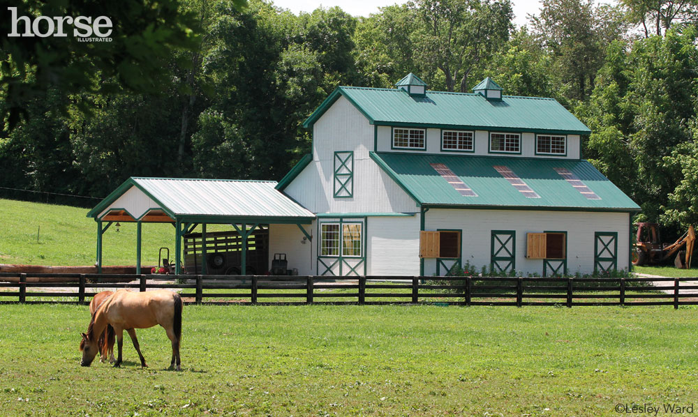 Horse grazing in front of a barn