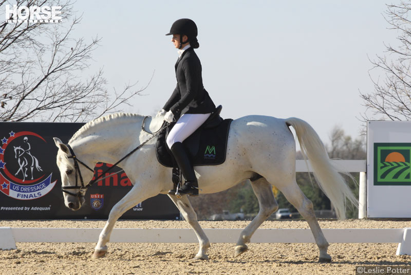 Dressage horse and rider doing a stretchy trot