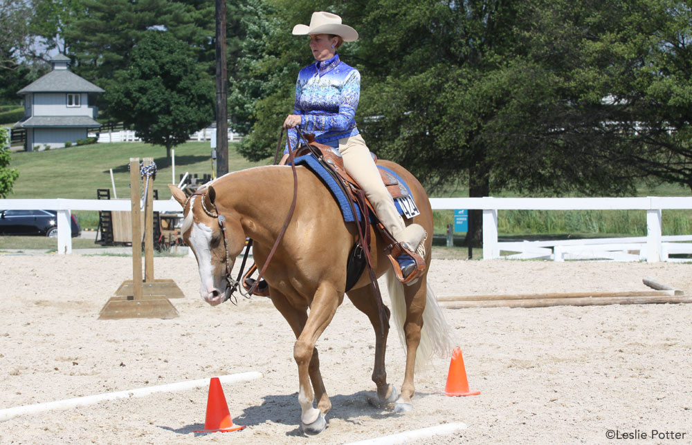 Horse and rider in a trail class