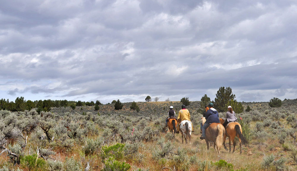 Group trail riding in Oregon