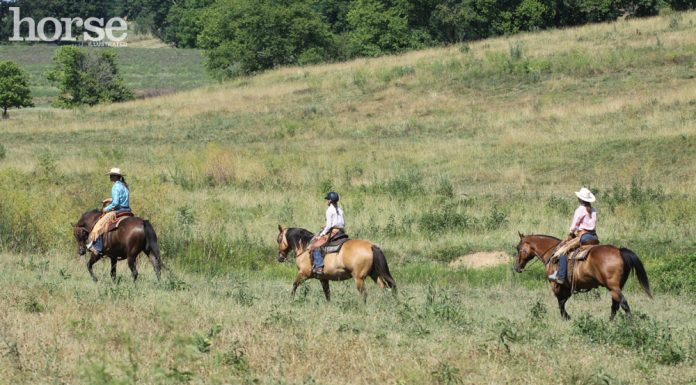 Group of trail riders in an open field