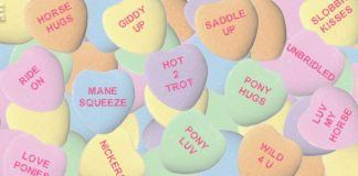 Horse Valentine Hearts