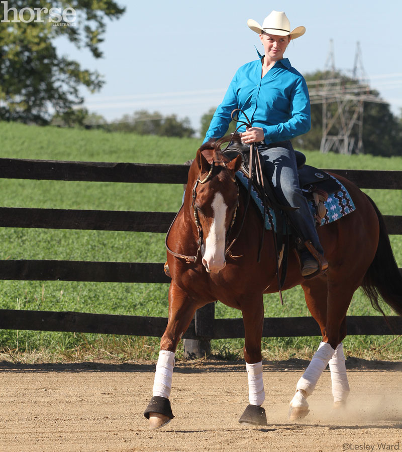 Western horse jogging