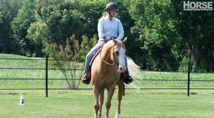 Western palomino horse bending