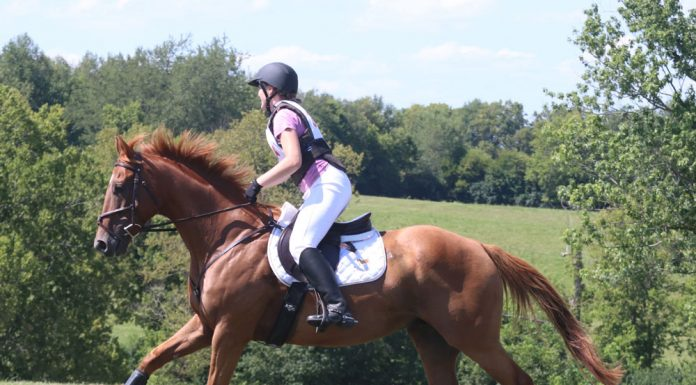 Galloping cross-country
