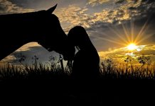 Horse and woman sunset silhouette